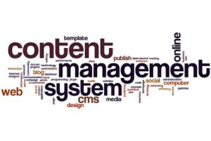 Content management system word